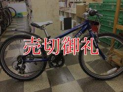 画像1: 〔中古自転車〕LOUIS GARNEAU ルイガノ LGS-J22  ジュニアマウンテンバイク 22インチ 2×6段変速 アルミフレーム ブルー